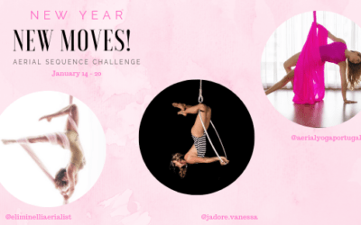 New Year New Moves - learn aerial hoop dance